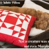 Red & White Patchwork Pillow - Free Project